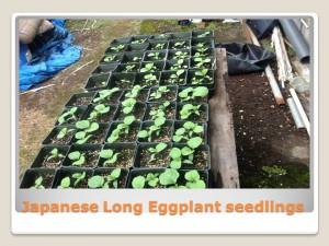 HCEOC FARM PRESENTATION 5-27-2014_006